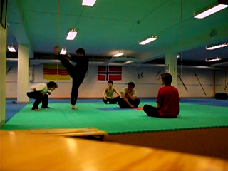 Bilde fra Showprogram 2006